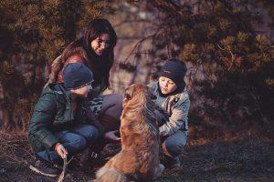 DiVertigo Family Outside